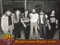 Lynyrd Skynyrd - gimme back my bullets - pic 1 small
