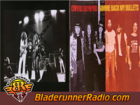 Lynyrd Skynyrd - gimme back my bullets - pic 8 small