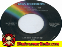 Lynyrd Skynyrd - i know a little - pic 1 small