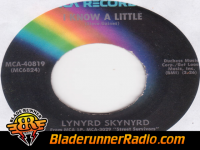 Lynyrd Skynyrd - i know a little - pic 2 small