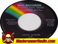 Lynyrd Skynyrd - saturday night special - pic 5 small