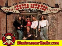 Lynyrd Skynyrd - simple man - pic 0 small