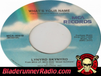 Lynyrd Skynyrd - whats your name - pic 4 small