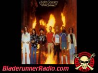 Lynyrd Skynyrd - you got that right - pic 0 small