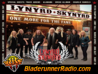 Lynyrd Skynyrd - you got that right - pic 7 small