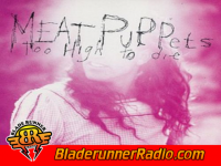 Meat Puppets - backwater - pic 0 small