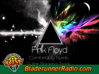 Pink Floyd - comfortably numb - pic 2 small