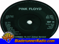 Pink Floyd - learning to fly - pic 3 small