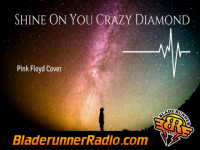 Pink Floyd - shine on you crazy diamond pt 2 - pic 2 small