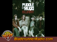 Puddle Of Mudd - blurry - pic 0 small