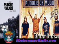 Puddle Of Mudd - blurry - pic 6 small