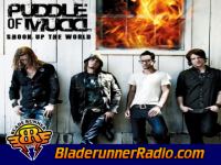 Puddle Of Mudd - blurry - pic 8 small