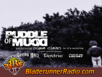 Puddle Of Mudd - blurry acoustic - pic 5 small