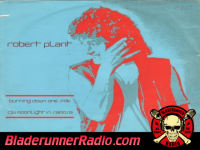 Robert Plant - burning down one side - pic 2 small
