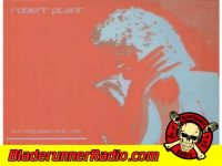 Robert Plant - burning down one side - pic 6 small