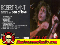 Robert Plant - sea of love - pic 2 small