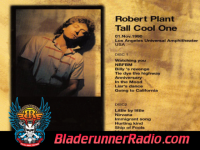 Robert Plant - tall cool one - pic 2 small