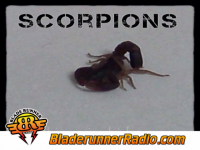 Scorpions - pictured life - pic 8 small