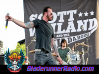 Scott Weiland Amp The Wildabouts - way she moves - pic 7 small