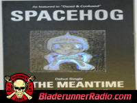 Spacehog - in the meantime - pic 2 small