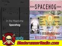Spacehog - in the meantime - pic 5 small