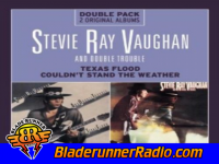 Stevie Ray Vaughan - couldnt stand the weather - pic 2 small