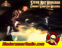 Stevie Ray Vaughan - couldnt stand the weather - pic 7 small