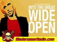 Tom Petty - into the great wide open - pic 2 small